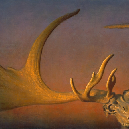 Megaloceros Giganteus, 2011, oil on linen, Signed bottom right, 36 x 72 inches